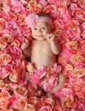 Bambino in una base delle rose Fotografia Stock Libera da Diritti