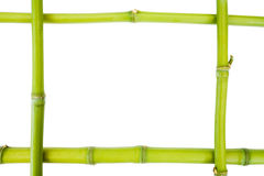 Bamboo frame Royalty Free Stock Photography