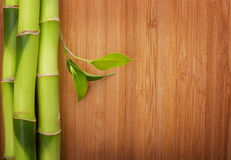 Bamboo frame made of stems Royalty Free Stock Photos