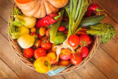 Basket with fresh organic vegetables Stock Photography