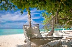 Beach Hammock Royalty Free Stock Photo