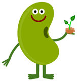 Bean and plant Stock Photography