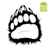 Bear paw Stock Image