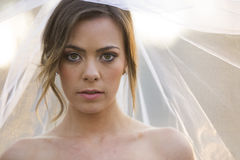 Beautiful bride in natural outdoor environment Stock Photography