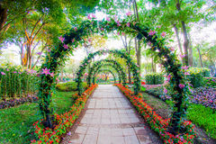 Beautiful flower arches with walkway in ornamental plants garden Royalty Free Stock Photos
