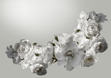 Beautiful  horizontal frame with a bouquet of white roses  with rain drops. Black and white toning image Royalty Free Stock Photos