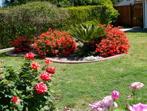 Beautiful landscaping in a front yard Royalty Free Stock Photography