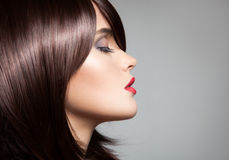 Beautiful model with perfect long glossy brown hair. Stock Photography