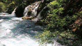 Beautiful river video stock video