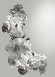Beautiful vertical frame with a bouquet of white roses  with rain drops. Black and white toning image Stock Images