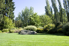 Beautiful yard with lush greenery Royalty Free Stock Photos