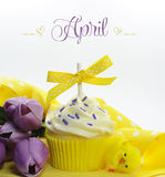 Beautiful yellow Spring or Easter theme cupcake with seasonal flowers tulips and decorations for the month of April Stock Photo