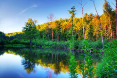 Beaver pond at sunset Royalty Free Stock Photography