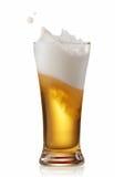 Beer splashing Royalty Free Stock Photos