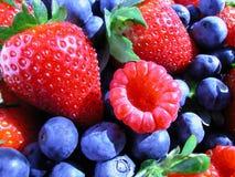 berries summer 库存图片