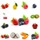 Berry theme mix Stock Photography