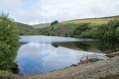 Bilberry Reservoir Royalty Free Stock Photo