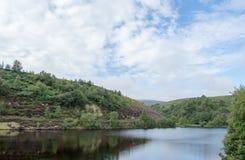 Bilberry Reservoir Stock Photo