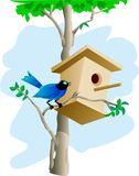 Bird and tree house Stock Image