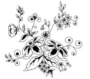 Black-and-white flowers and leaves design element  Royalty Free Stock Photography
