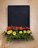 Blackboard With Flowers Stock Images