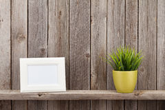 Blank photo frame and plant Stock Photo