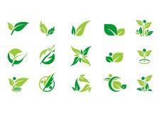 Blatt, Anlage, Logo, Ökologie, Leute, Wellness, Grün, Blätter, Natursymbol-Ikonensatz des Vektors entwirft Lizenzfreies Stockfoto