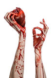 Blood and Halloween theme: terrible bloody hand hold torn bleeding human heart isolated on white background in studio Stock Photo