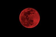 Blood moon Royalty Free Stock Photo