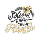 Bloom there are you planted metaphor inscription Stock Photos
