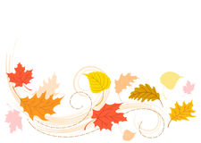 Blowing Autumn Fall Leaves/eps Royalty Free Stock Photo