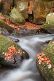 Blurred water detail with rocks nad Autumn leaves in Padley Gorg Royalty Free Stock Photography