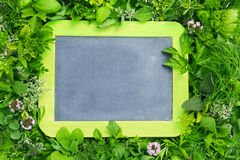 Board among herbs Royalty Free Stock Photography
