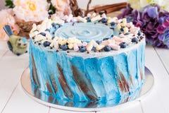 Bolo azul com marshmallow Imagens de Stock Royalty Free