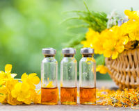 Bottles of healing plants treatment and healthy herbs Stock Images