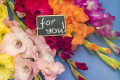 Bouquet of gladioli and sign saying 'For You' Royalty Free Stock Photos
