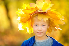 Boy in the autumn park Stock Photography
