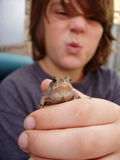 Boy holding out toad Royalty Free Stock Photos