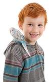 Boy with pet bird budgerigar on shoulder Stock Images