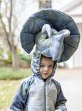 Boy wearing dinosaur costume Stock Photo