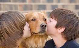 Boys Kissing a Dog Stock Images
