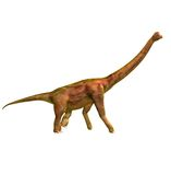 Brachiosaur Royalty Free Stock Photos