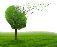 Brain disease memory loss due to Dementia Alzheimer's illness Royalty Free Stock Photography