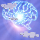 Brain Puzzle Stock Image
