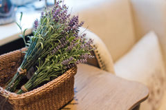 Branches lavender Stock Photography