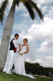 Bride and groom toast Stock Photography