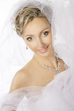 Bride Portrait, Wedding Jewelry Necklace Earrings, Makeup Royalty Free Stock Photos
