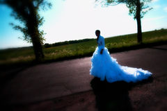 Bride on road Royalty Free Stock Image