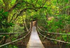 Bridge to the deep jungle Stock Images