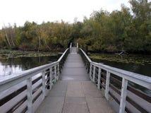 Bridge to Marsh Island Royalty Free Stock Images